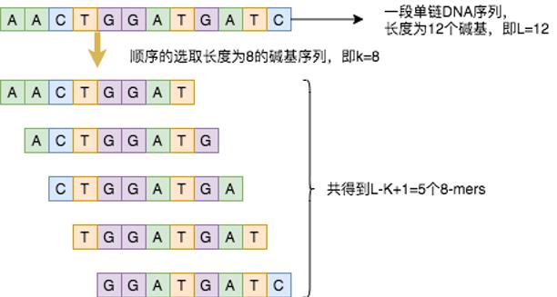 图5:8-mers核酸序列示意图.png