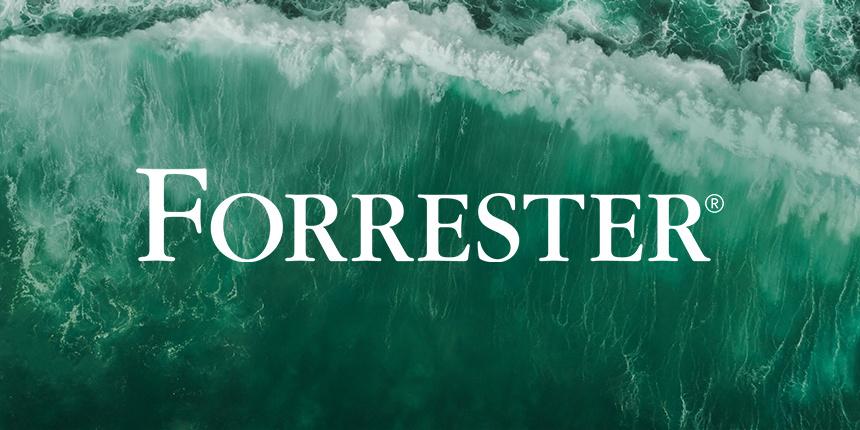 Forrester Wave™ 扫盲贴